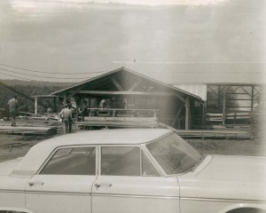 frontal view of the original sawmill facility at Linden in the 1960s